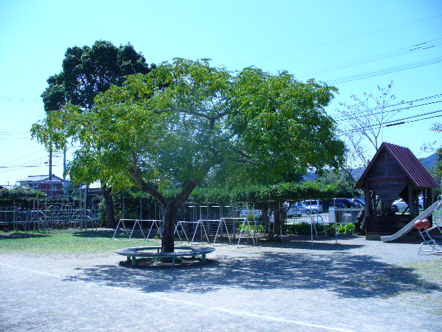 tree-at-a-youchien.jpg